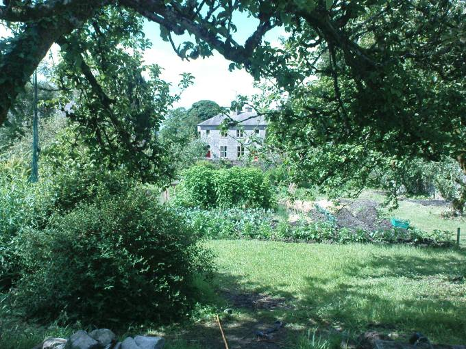 View of the house with Apple Tree (walled garden )